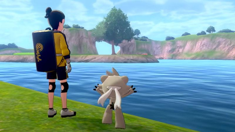 Pokemon Sword and Shield Expansion Pass Video Game